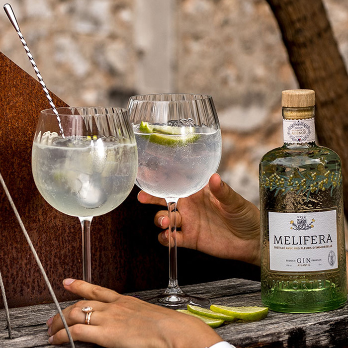 Melifera-gin-francais-bio-cocktail-gin-to-perfect