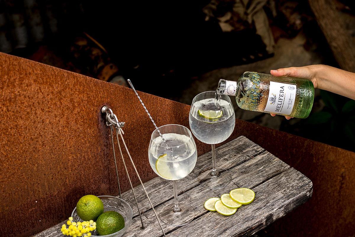 Melifera-meilleur-tonic-pour-son-gin-blog