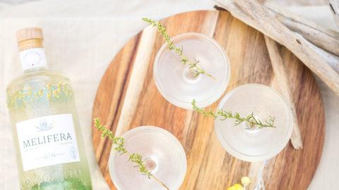 Melifera-blog-recettes-printemps-trois-cocktails-gin