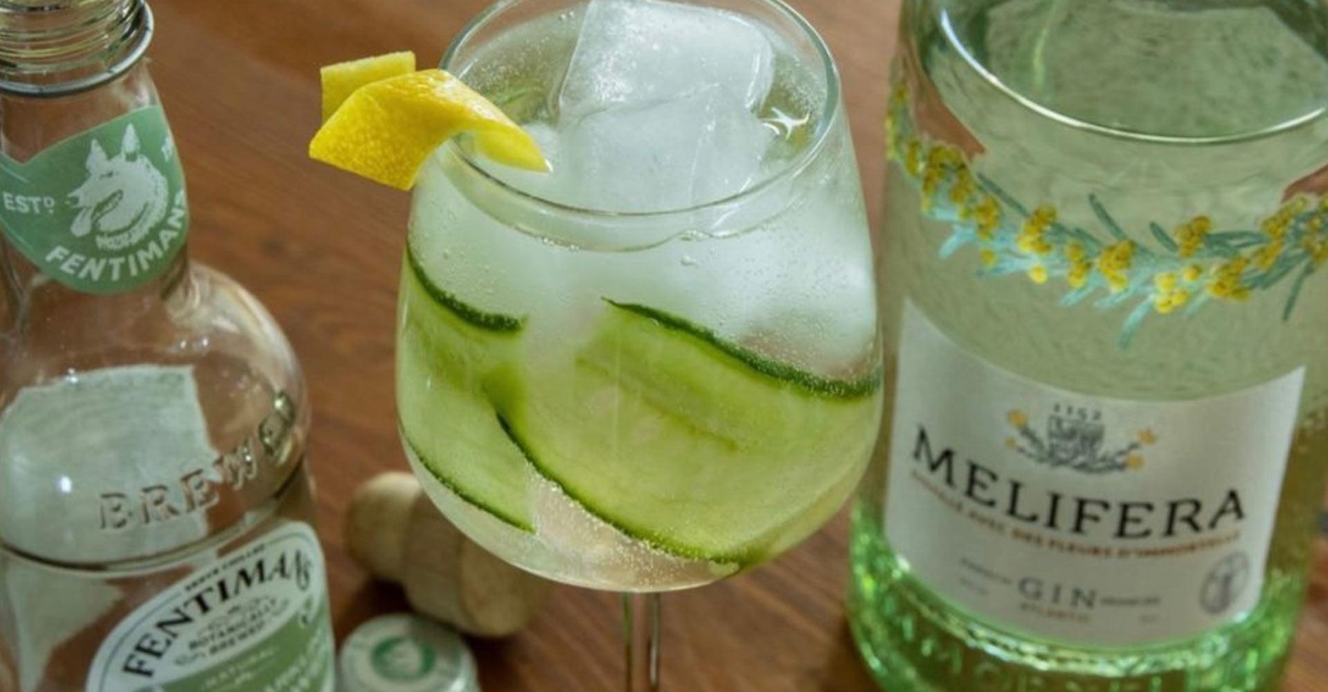 Eau-tonique-Fentimans-la-selection-de-Melifera-pour-sublimer-son-gin