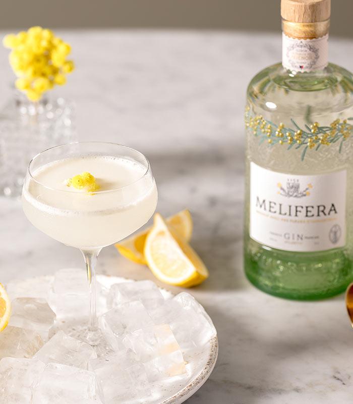 Melifera-gin-francais-bio-cocktail-army-and-navy