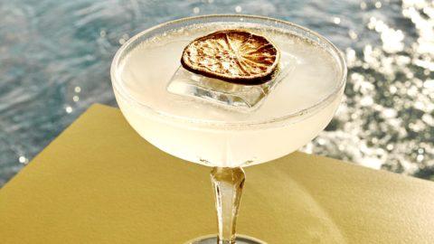 apéro été cocktail gin barona martini